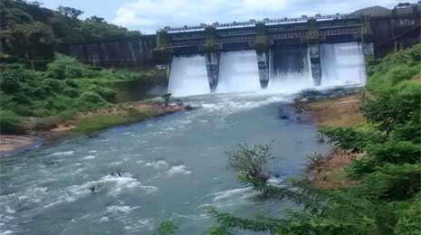 Peruvannamoozhi Dam