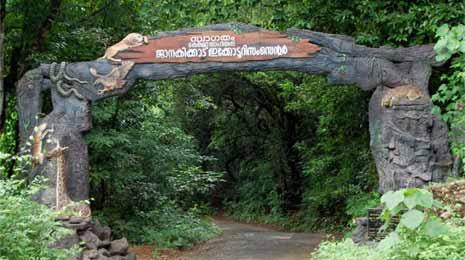 Janakikadu